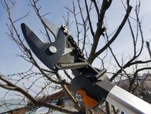 Professionele pruner met spanner en ketting voor het in orde maken van bomen tegen de hemel royalty-vrije stock afbeelding