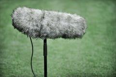 Professionele sportmicrofoon Royalty-vrije Stock Foto