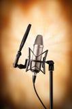 Professionele zingende microfoon Stock Afbeeldingen