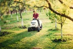 Professionell som landskap arbeten i trädgård Arbetare som mejar och klipper gräsmatta, gräs Arkivbild