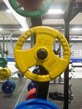 Professionelle olympische Scheibe für Stange Lizenzfreies Stockfoto