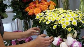 Professionelles floristry Studio und Geschäft stock footage