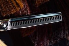 Professionelln scissors stylistfrisören på bakgrunden av sunt härligt hår Ett exempel av en tester royaltyfri foto