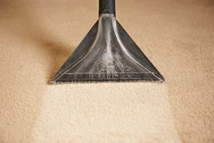 Professionellt rengörande mattor Arkivfoton