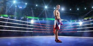 Professionl拳击手在圆环站立 免版税库存照片