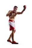 Professionl bokser odizolowywa na bielu obraz royalty free