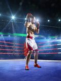 Professionl bokser stoi na pierścionku obrazy stock