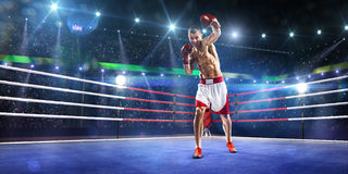 Professionl boxer is standing on the ring Royalty Free Stock Images