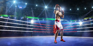 Professionl boxer is standing on the ring Stock Images