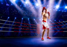 Professionl boxer is standing on the ring Royalty Free Stock Photography