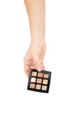 Professionnal make-up brush cosmetic in female hand beautician Stock Image