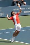 Professionnel de tennis photographie stock libre de droits