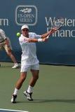 Professionnel de tennis Image stock