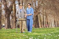Professionnel médical aidant un aîné en parc Image libre de droits