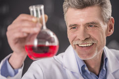 Professor. Chemistry or science concept. Senior chemistry professor working  in  laboratory Royalty Free Stock Image