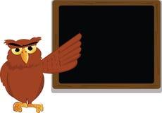 Professor da coruja Imagem de Stock