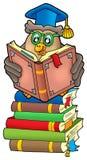 Professor da coruja da leitura em livros Foto de Stock Royalty Free