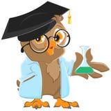 Professor da coruja em uma veste azul que guarda uma garrafa ilustração royalty free