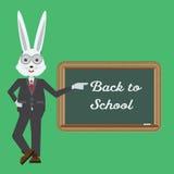 Professor do coelho que mostra com mão no quadro-negro De volta ao conceito da escola ilustração stock