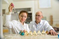 Professor e seu assistente no laboratório foto de stock royalty free