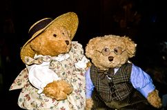 The professor and his wife - A pair of teddy bears stock image