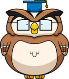 Professor Owl Stock Photo