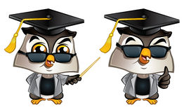 Professor Owl Royalty Free Stock Photos