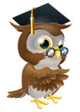 Professor owl. An illustration of a smart owl wearing a mortar board graduation cap and spectacles and pointing Stock Images