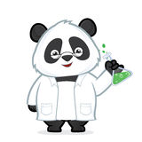 Professor panda. Clipart picture of a professor panda cartoon character Stock Photography