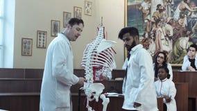 Professor que mostra um esqueleto video estoque
