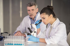 Professor. Senior chemistry professor and his assistant working  in  laboratory Stock Photo