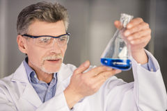 Professor. Senior chemistry professor holding flask with blue fluid in spectacles  in his laboratory Stock Image