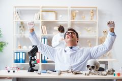 The professor studying human skeleton in lab Stock Photography