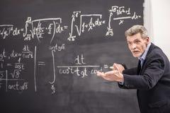 professore Immagine Stock