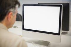 Professore che per mezzo del computer Immagini Stock Libere da Diritti
