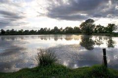 Profiel van bomen in een spiegel van een rivier Stock Afbeeldingen