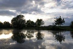 Profiel van bomen in een spiegel van een rivier Stock Afbeelding