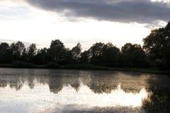Profiel van bomen in een spiegel van een rivier Royalty-vrije Stock Afbeelding