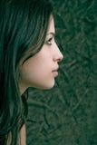 profil Obraz Stock