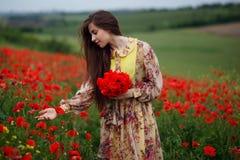 Profil av en härlig ung kvinna, långt hår som står i det röda vallmoblommafältet, härlig landskapbakgrund royaltyfri bild