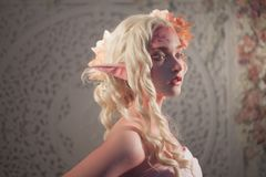 Profil d'elfe de fille Imagination et conte de fées, jeux d'ordinateur Fée mystérieuse photographie stock