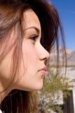 Profil d'une femme photographie stock libre de droits