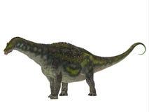 Profil de côté de dinosaure de Diamantinasaurus Photographie stock libre de droits