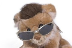 Profil de lion Photo stock