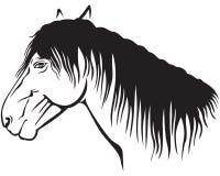 Profil de poney Images libres de droits