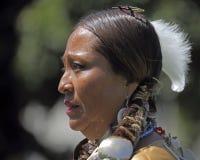 Profil des amerikanischen Ureinwohners Stockbild