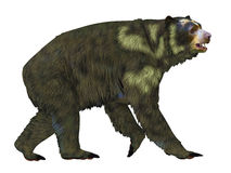 Profil för Arctodus björnsida vektor illustrationer