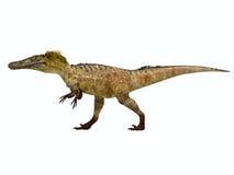 Profil för Austroraptor dinosauriesida stock illustrationer
