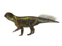Profil för Psittacosaurus dinosauriesida Royaltyfria Bilder