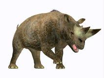 Profil latéral mammifère d'Arsinoitherium illustration stock